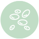 Roubea-Labs-Kalamata-Diagnostic-microbiology-laboratory-Covid-blood test