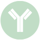 Roubea-Labs-Kalamata-Diagnostic-microbiology-laboratory-immunology